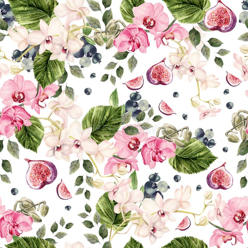 Beautiful watercolor bright pattern with orchid flowers and blueberry berries, fig fruits. stock illustration