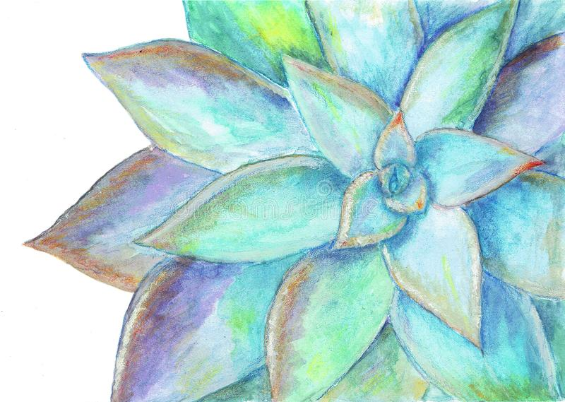 Beautiful watercolor decorative flower vector illustration