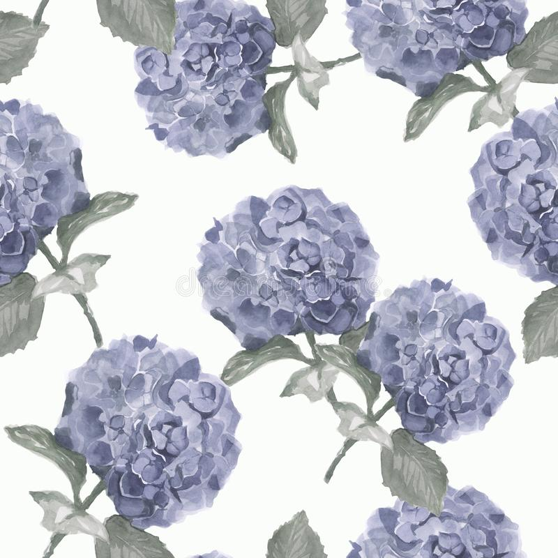 Beautiful watercolor floral seamless pattern with hydrangea flowers. Can be used as greeting card, wedding illustration. royalty free illustration