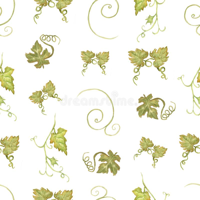 Beautiful watercolor hand drawn seamless green and yellow pattern with grapes branches and leaves.  Isolated on white background. Perfect for your design stock illustration