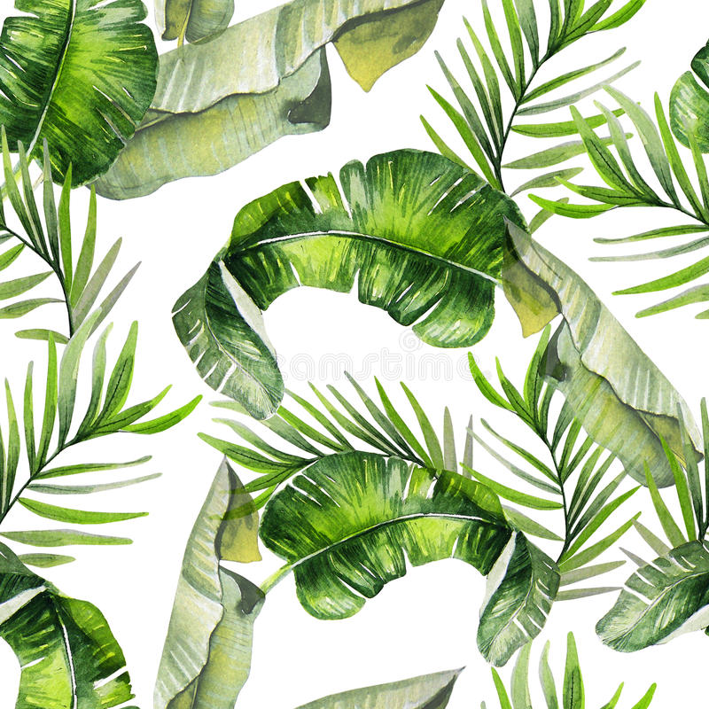 Beautiful watercolor seamless tropical jungle floral pattern background with palm leaves. Illustration royalty free illustration