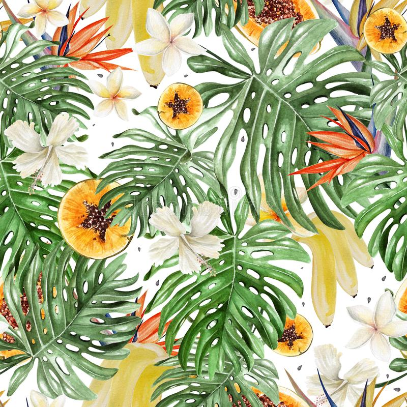 Beautiful watercolor tropical pattern with flowers of hibiscus and strelitzia. Tropical fruits papaya and bananas. stock illustration