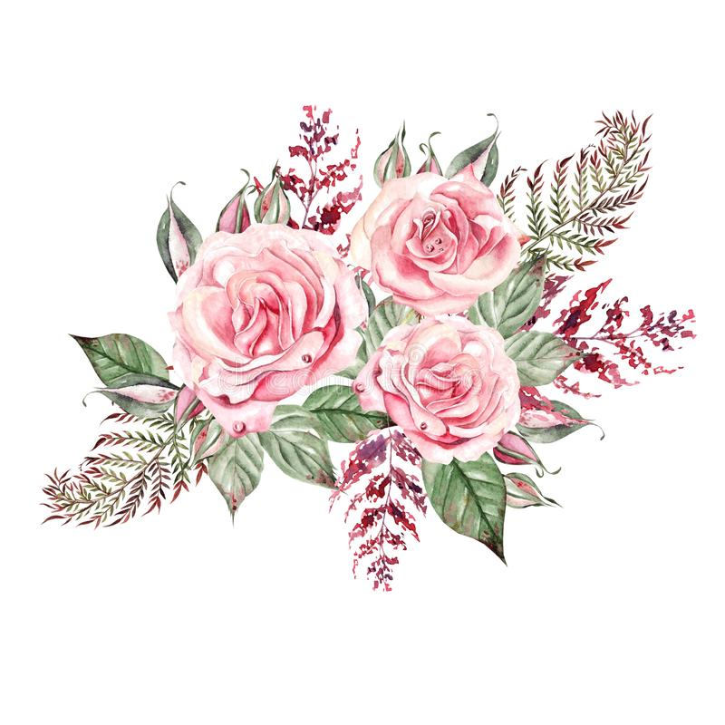 Beautiful  watercolor wedding bouquet with pink roses and fern, leaves. Illustration stock images