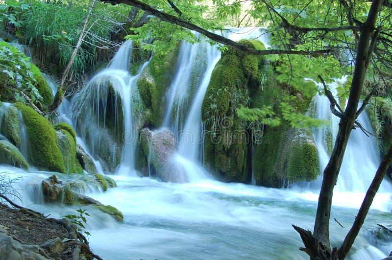 Download Beautiful Waterfall stock photo. Image of tree, river - 1565598