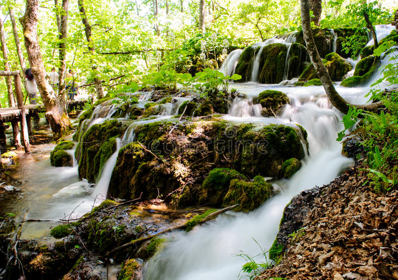 Download Beautiful waterfall stock photo. Image of outdoors, green - 24876472
