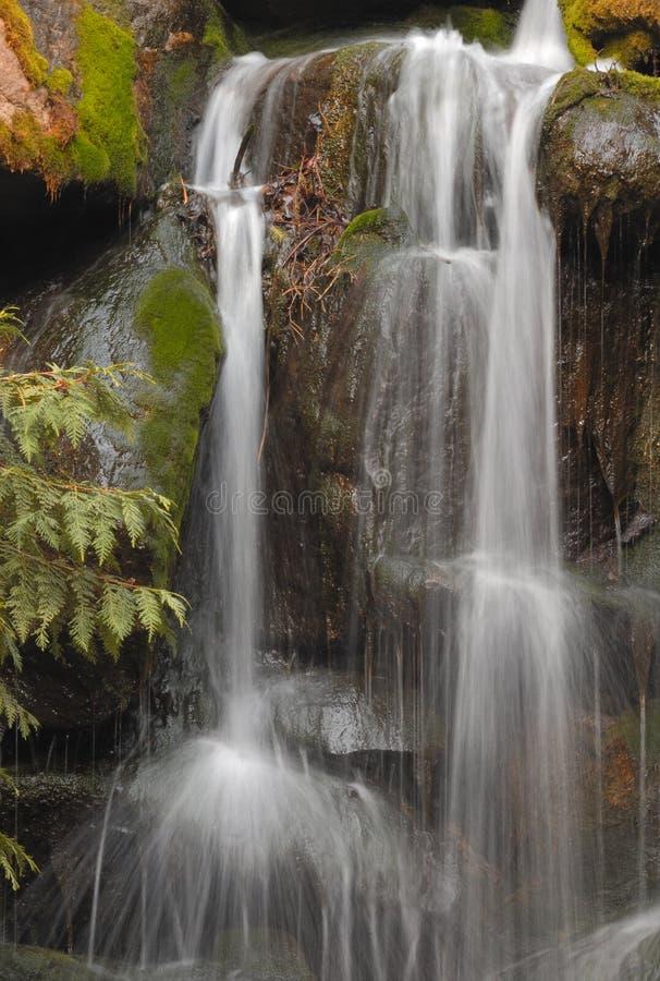 Download Beautiful waterfall stock photo. Image of scenery, cascading - 6137886
