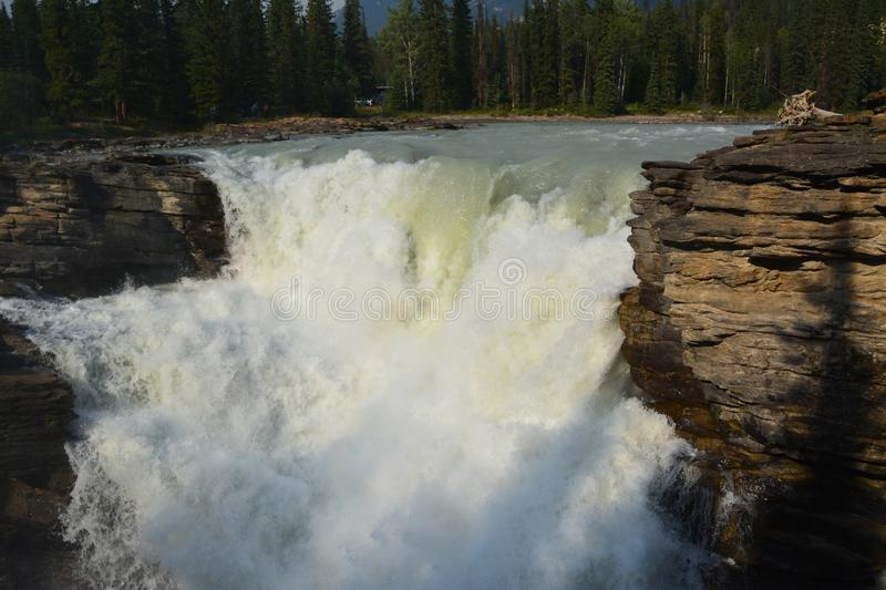 Athabasca Falls Canada royalty free stock photography