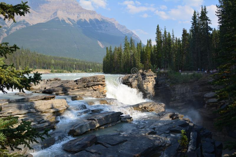 Athabasca Falls Canada stock photography