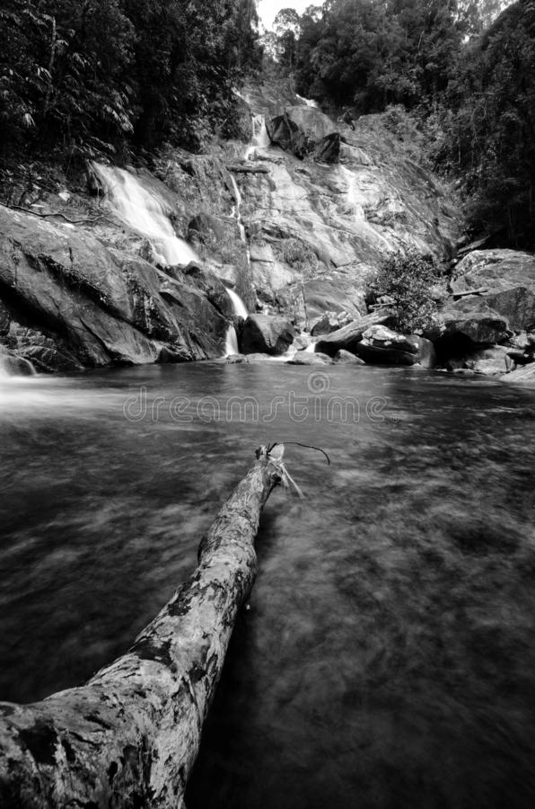 Beautiful waterfall in green forest, black and white photography. royalty free stock images