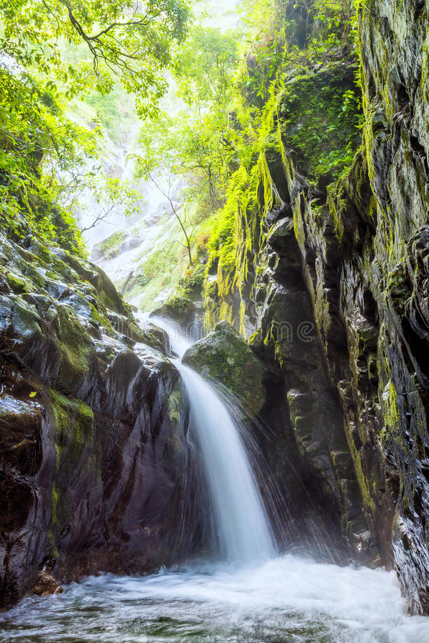 Beautiful waterfall from mountain in rain forest. Umpang, Thailand royalty free stock images