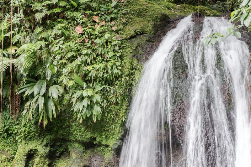 Beautiful waterfall with name Cascades aux Ecrevisses. Guadeloupe royalty free stock images