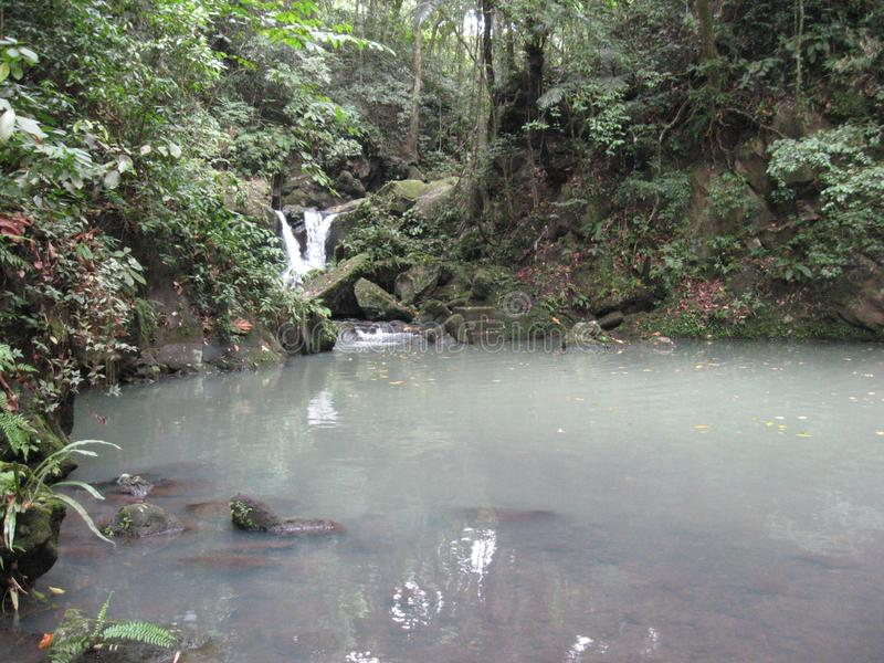 A waterfall and pond in the forest at Makiling botanical gardens, Philippines stock photography