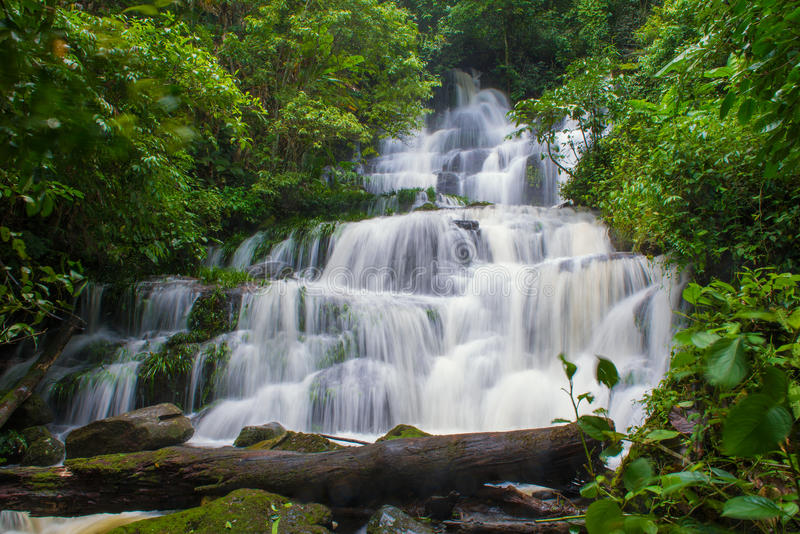 beautiful waterfall in rainforest at phu tub berk mountain phet stock photo