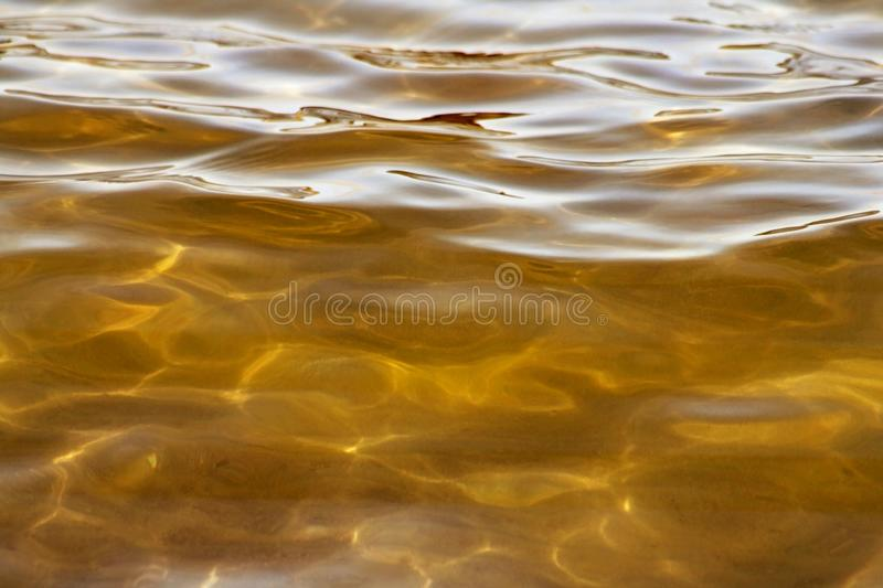 Beautiful waters of gold with soft ripples on surface and natural light royalty free stock photography