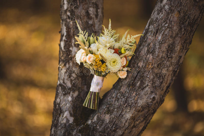 Beautiful wedding bouquet near the tree royalty free stock photos