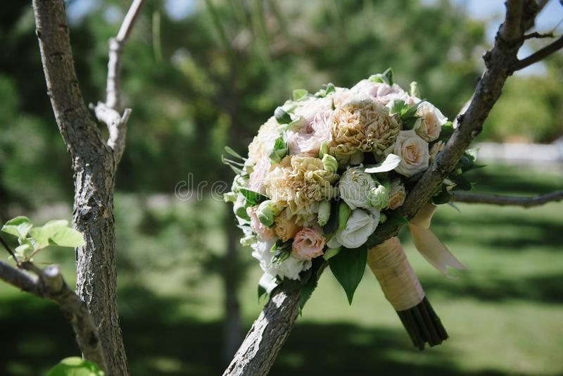 beautiful wedding bouquet of white flowers hanging on the tree royalty free stock photo