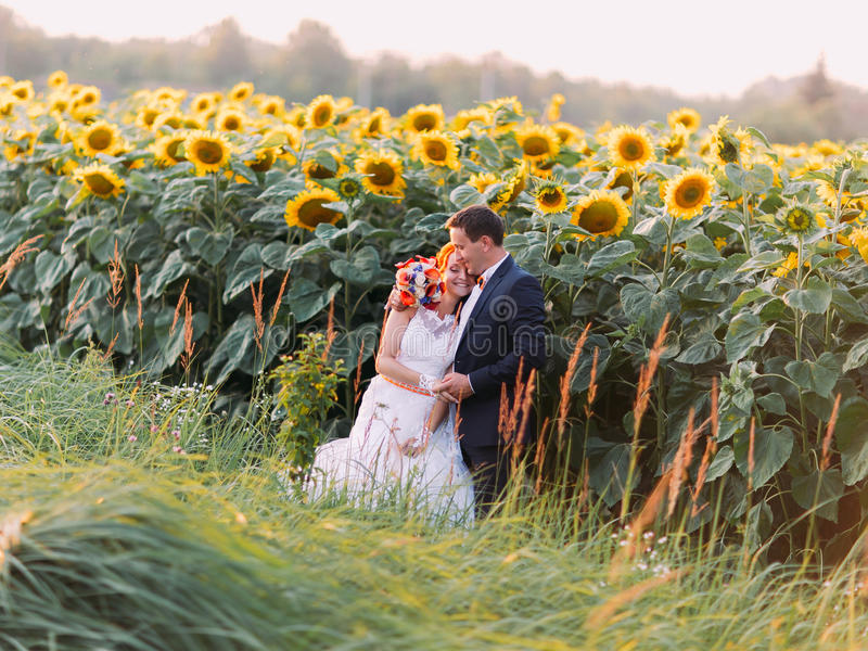 Beautiful wedding couple bride and groom sensual embrace on sunflower field royalty free stock images