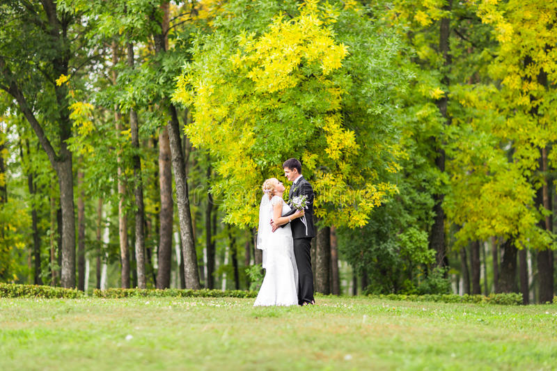 Beautiful wedding couple outdoors. They kiss and hug each other royalty free stock photography