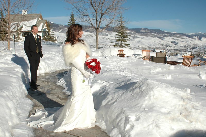 Beautiful Wedding Day. Bride and Groom in the winter snow after their wedding. Bridal portrait stock photo