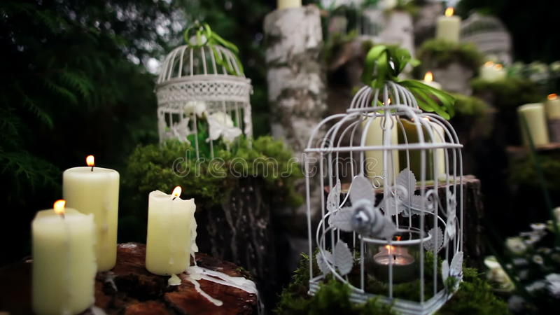 Beautiful Wedding Decor With Candles Birch Logs Stock Footage