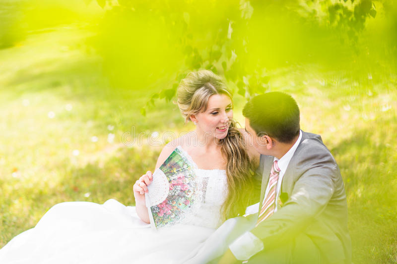 Beautiful wedding, husband and wife, lovers man woman, bride and groom royalty free stock photography