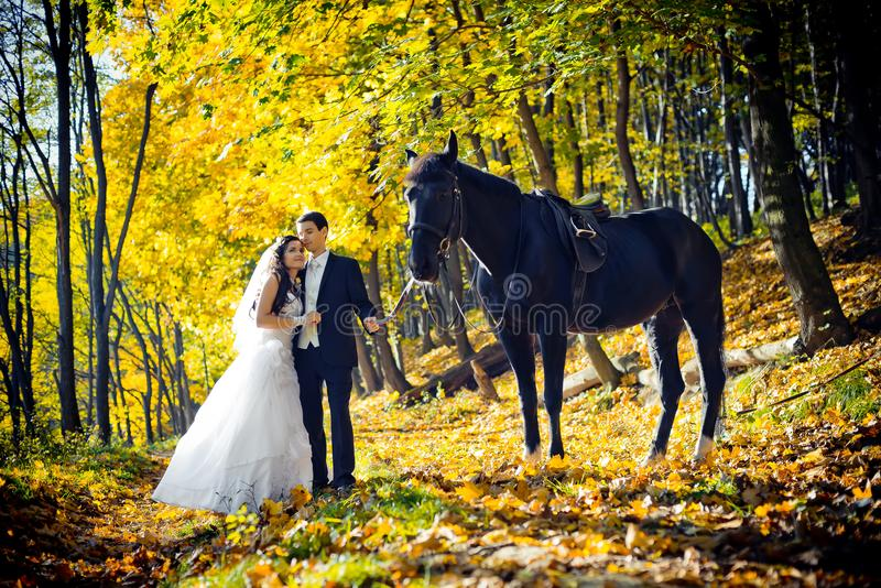 Beautiful wedding portrait in the autumn park. The beautiful gorgeous couple of newlyweds are tenderly hugging while royalty free stock photos