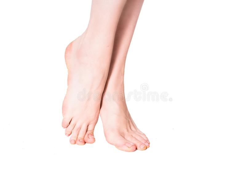 Beautiful well-groomed female a foot and a heel on a white background royalty free stock photography