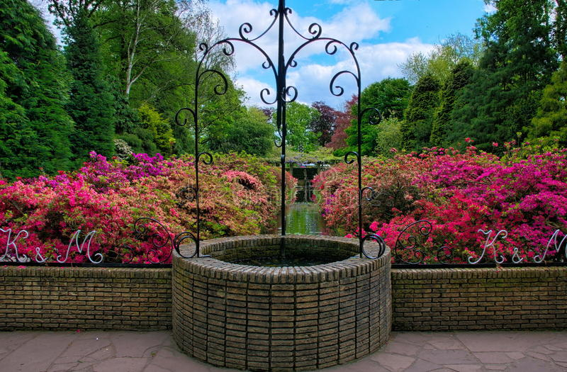Beautiful well with pink azalea flowers in Keukenhof Park, Lisse, Holland stock photography