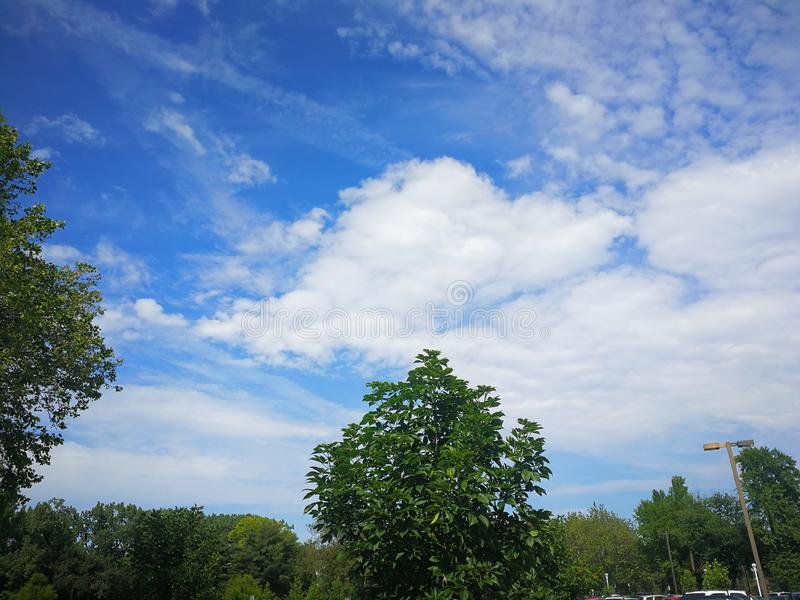 Beautiful White clouds in blue sky over trees royalty free stock images