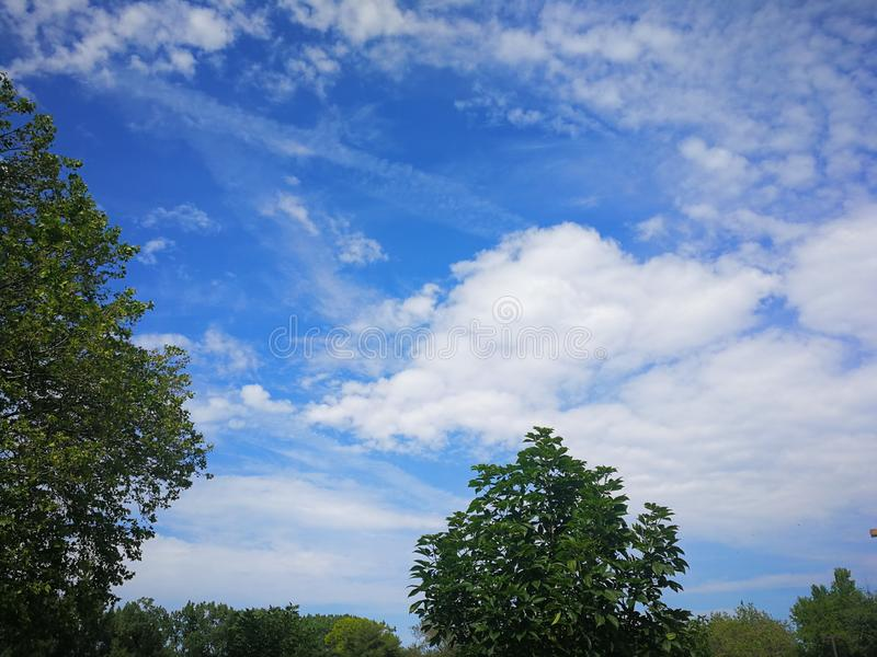 Beautiful White clouds in blue sky over trees stock photos
