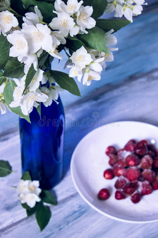 Beautiful white flowers in bottle. Beautiful white flowers in blue bottle. jasmin. wooden grey background. selective focus royalty free stock images