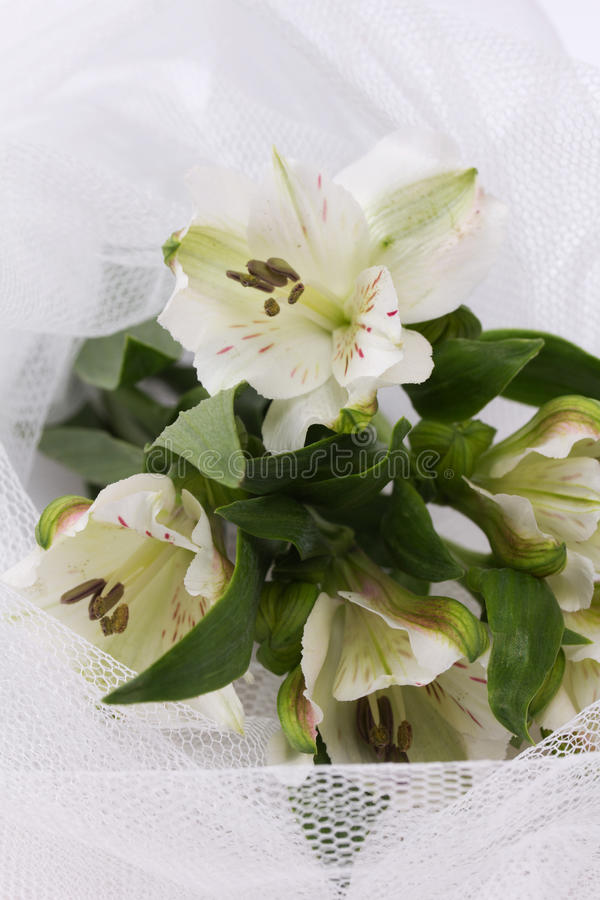 Beautiful white flowers on a white veil stock photography