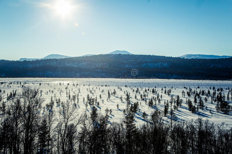 A beautiful white landscape of a frozen swamp with some trees and mountains stock photography