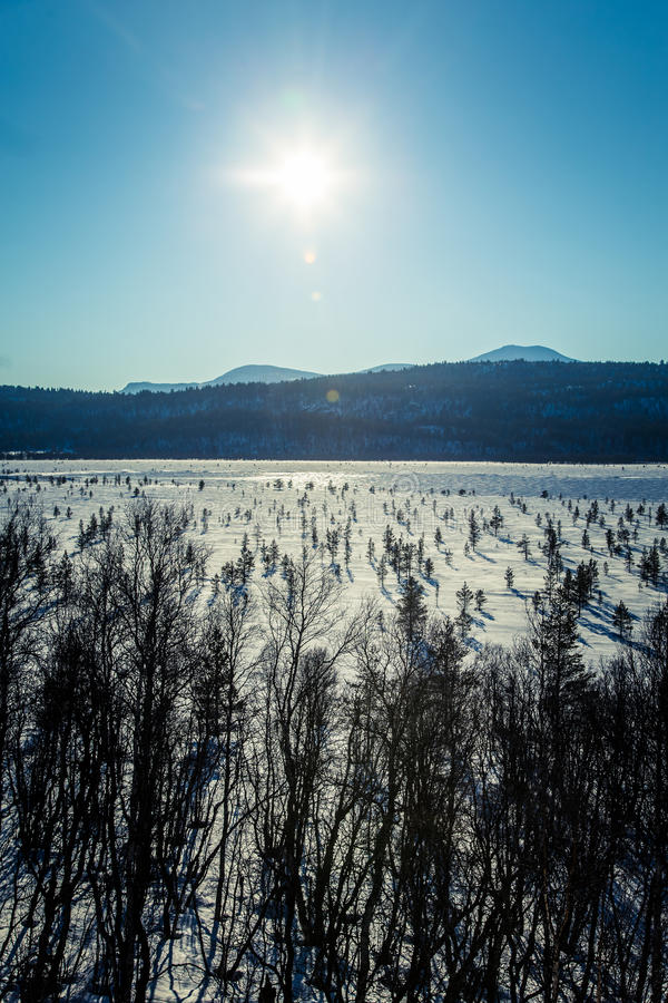 A beautiful white landscape of a frozen swamp with some trees and mountains stock image