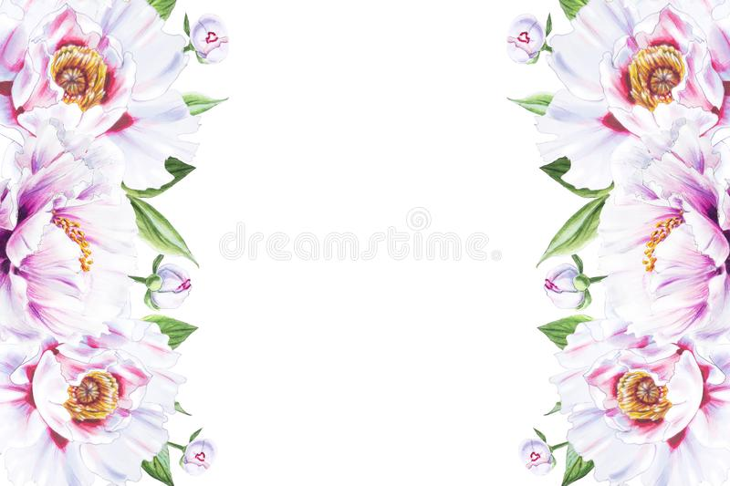 Beautiful white peony border frame. Bouquet of flowers. Floral print. Marker drawing. stock illustration