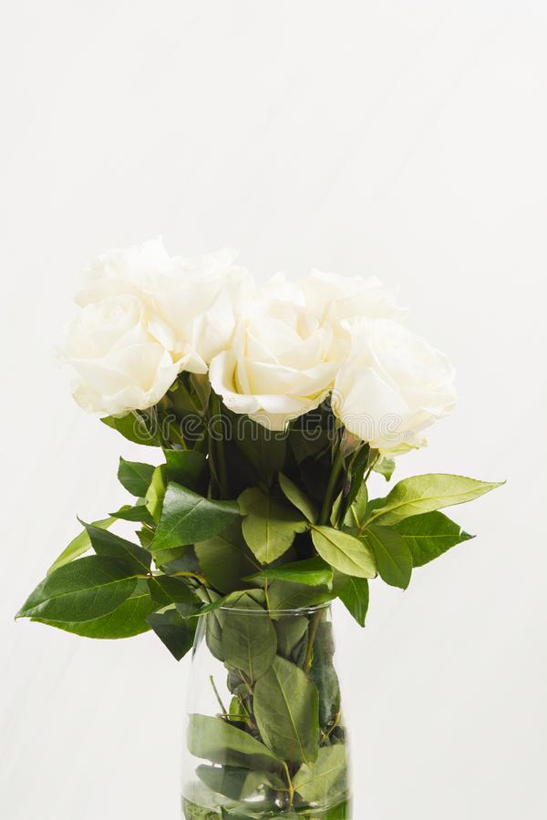 Beautiful white roses in bouquet in glass vase.Present for Valentine`s Day, wedding or arrangement holiday stock image