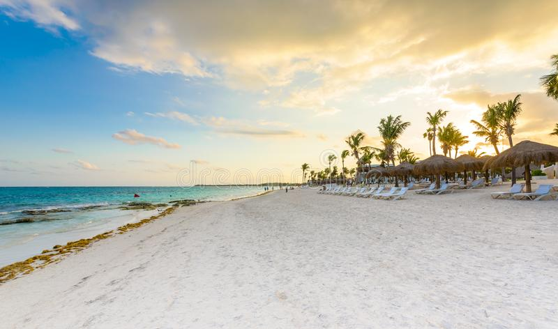 Beautiful white sand beach in Akumal, Mexico - paradise bay Beach in Quintana Roo - caribbean coast - sunset at Riviera Maya royalty free stock images