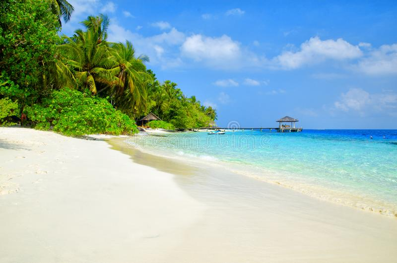 Beautiful white sand tropical beach landscape. Maldives island, Indian Ocean. Travel and summer vacation background royalty free stock photography