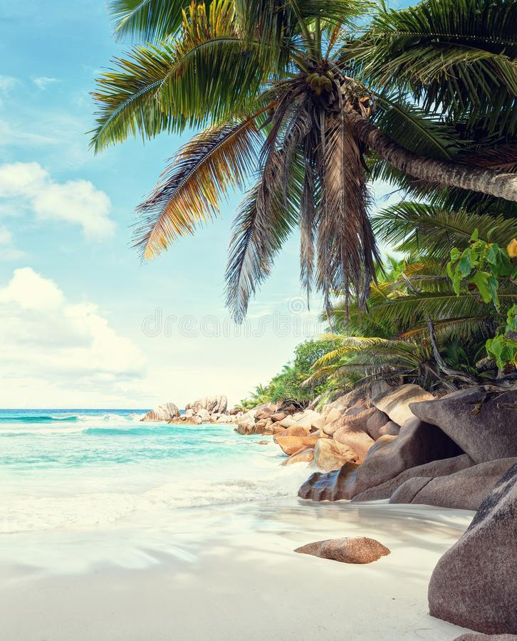 Beautiful white sandy beach surrounded by granite rocks and coconut palm trees. La Digue, Seychelles. Toned image stock photo