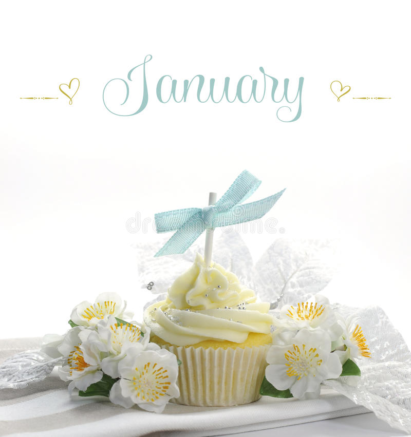Beautiful white snow theme cupcake with seasonal flowers and decorations for the month of January. With sample text or copy space for your text here stock images