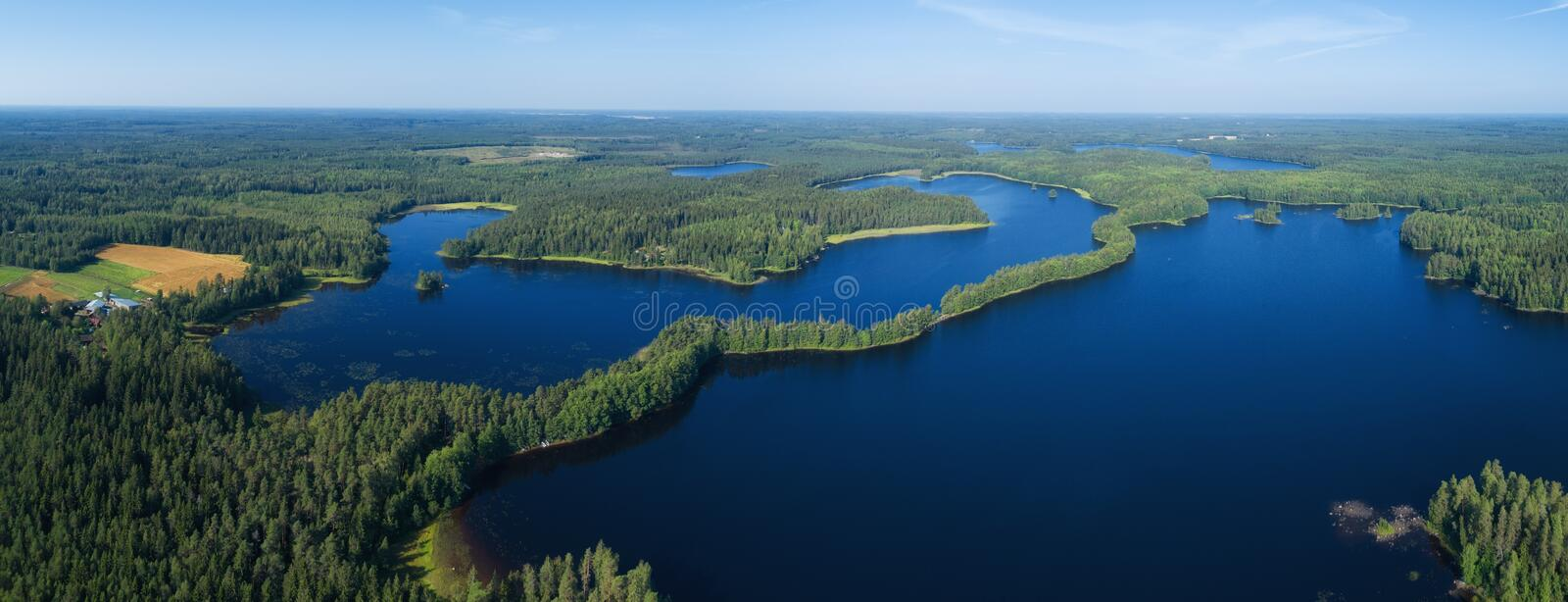 Beautiful wide panorama of fir forest and huge lake on a calm summer morning. royalty free stock photos