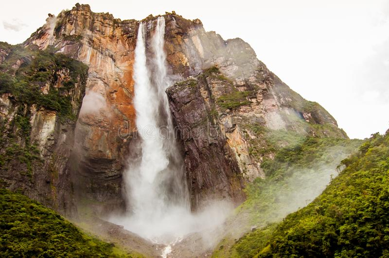 View from below forest of angel falls in venezuela in canaima park, giving a sense of discovery and awe royalty free stock photography