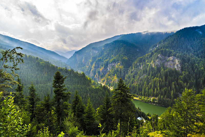 Beautiful wild mountain landscape in the Carpathian Mountains, R royalty free stock photo