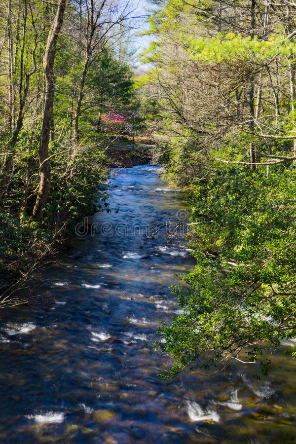 Beautiful Wild Mountain Trout Stream in Giles County, Virginia, USA. A beautiful Wild mountain trout stream located in the forest of the Jefferson National stock image