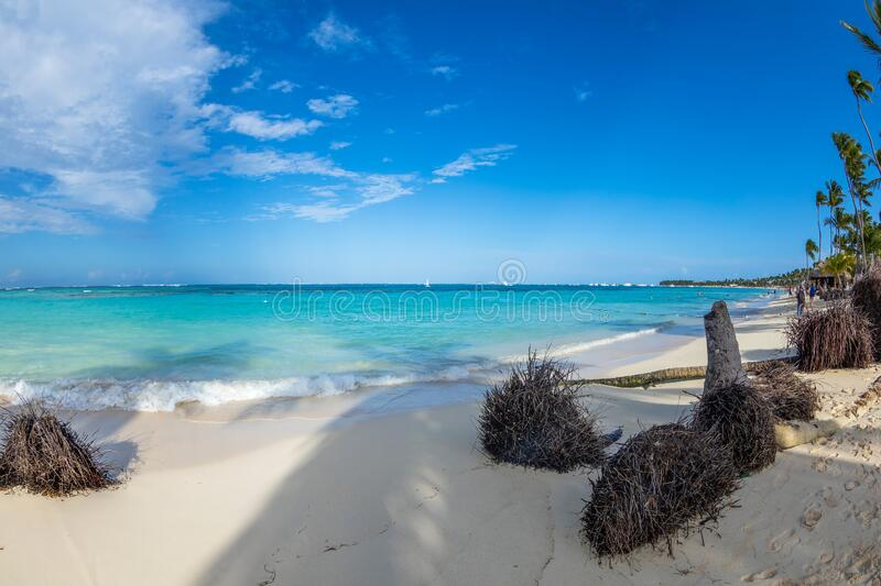 Beautiful wild and sand beach in Punta Cana, Dominican Republic stock photography