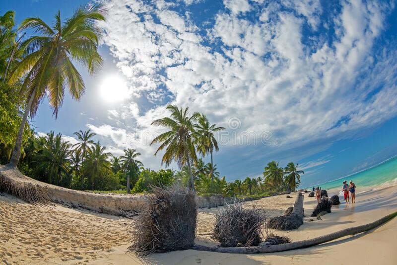 Beautiful wild and sand beach in Punta Cana, Dominican Republic stock image