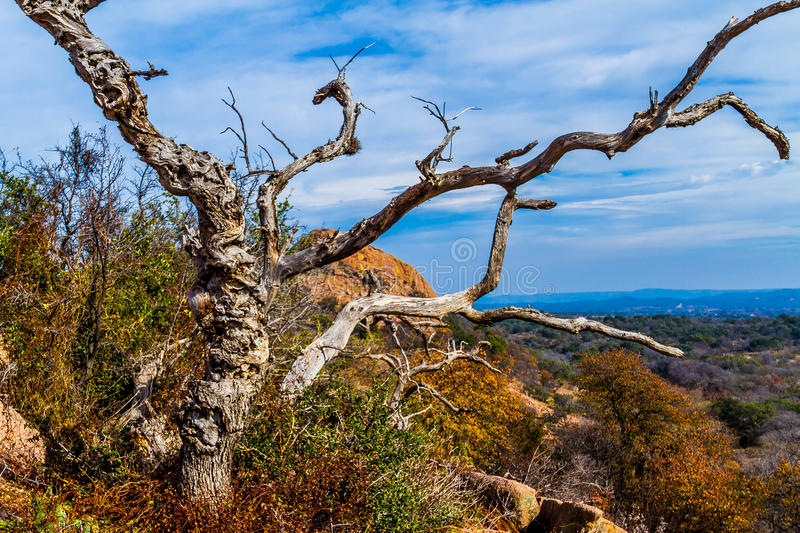 A Beautiful Wild Western View with a Gnarly Dead Tree, a View of Turkey Peak on Enchanted Rock, Texas. A Beautiful Wild Western View with a Gnarly Dead Tree, a royalty free stock photos