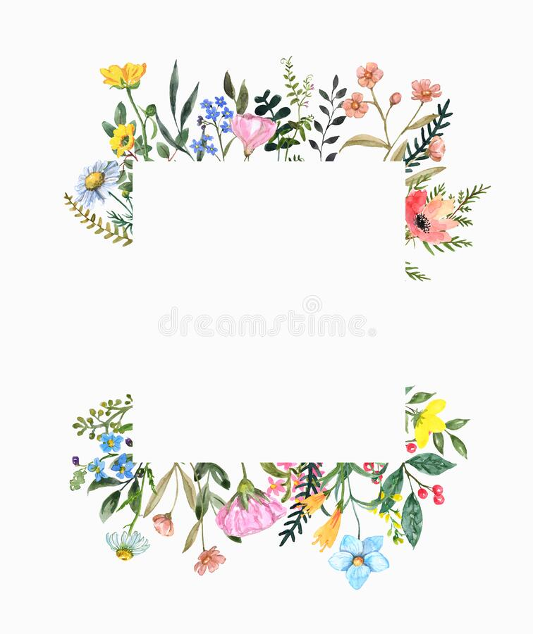 Free Beautiful Wildflower Square Border With Hand Painted Summer Meadow Flowers, Herbs, Grass, Leaves, Isolated On White Background. Royalty Free Stock Image - 172094256