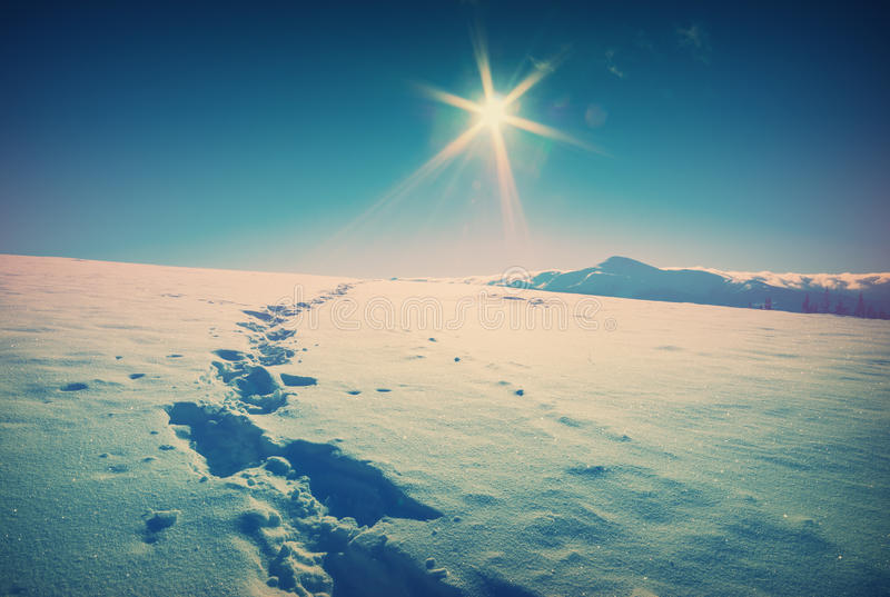 Beautiful winter in a Carpathian mountain valley. Vintage royalty free stock photography