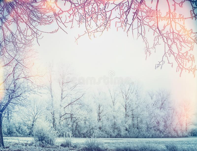 Beautiful winter country landscape with snow trees and frame royalty free stock photography